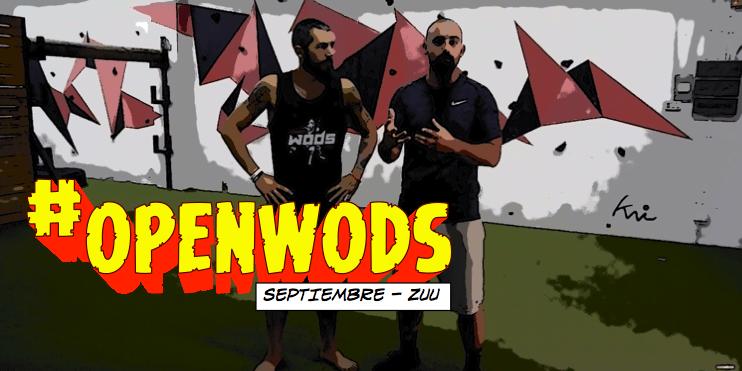 openwods-septiembre